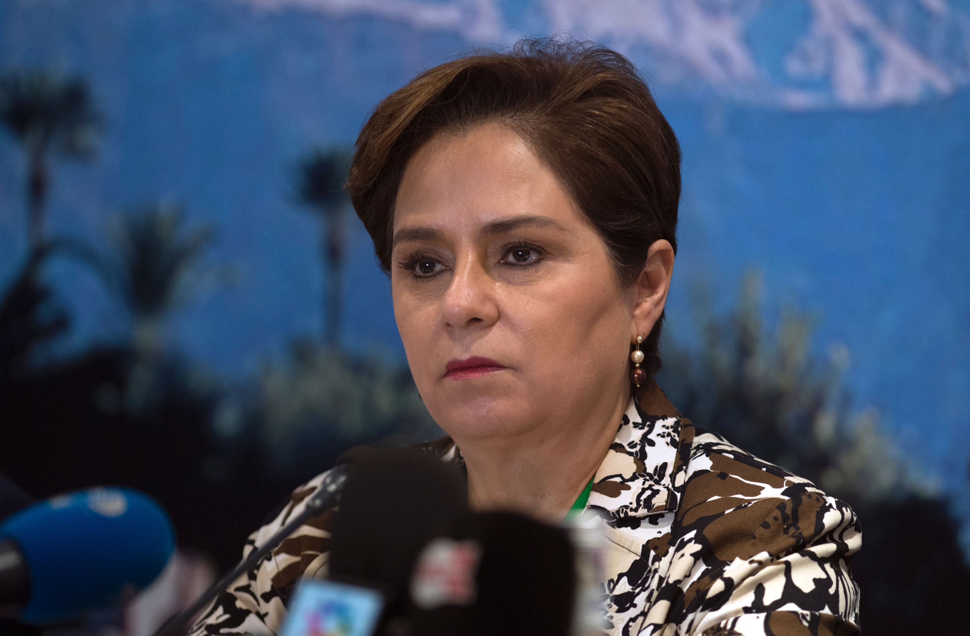 "Patricia Espinosa, executive secretary of the United Nations Framework Convention on Climate Change, urged ""sober assessment"" over the task still ahead."