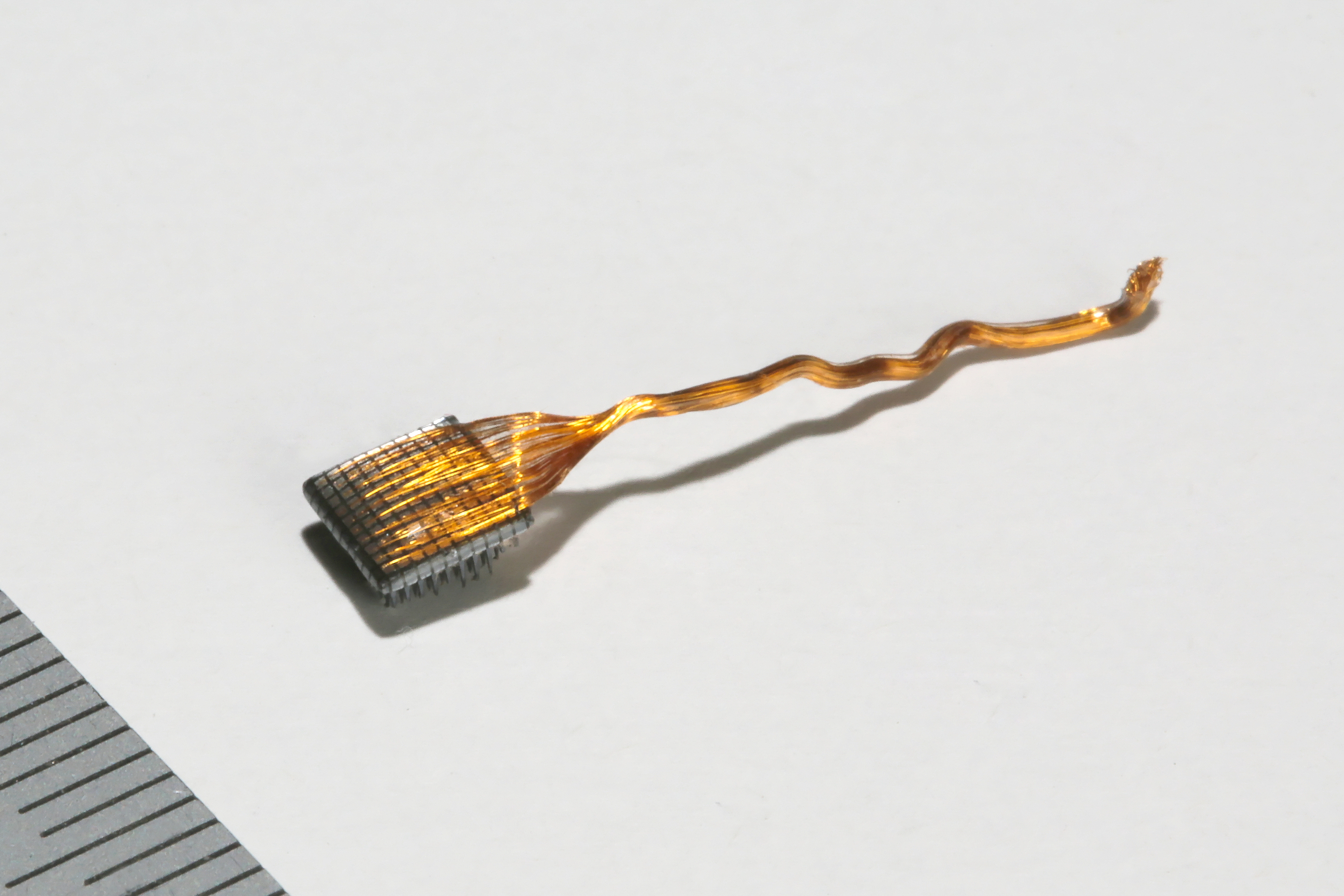 A close-up of a brain-reading chip, bristling with electrodes.
