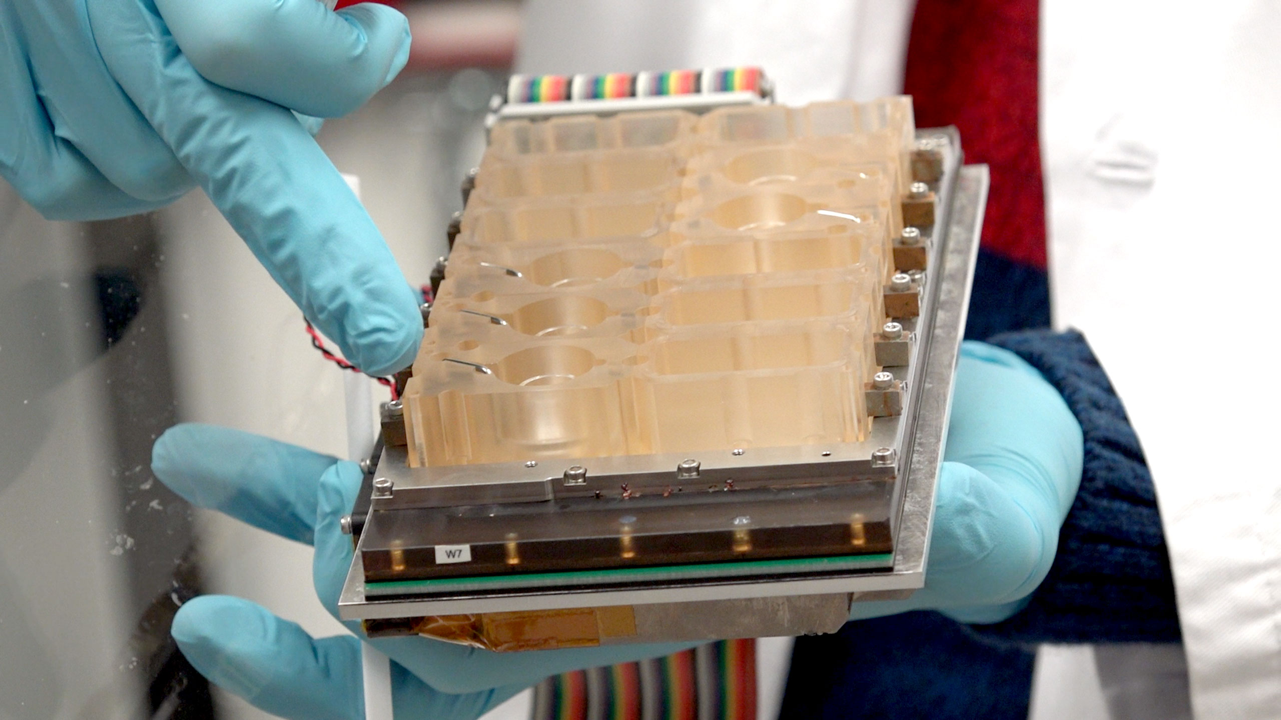 A close-up of a device that mimics the human menstrual cycle. Each compartment contains living cells from a different part of the female reproductive system.